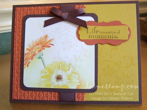 Daisy Hybrid Card