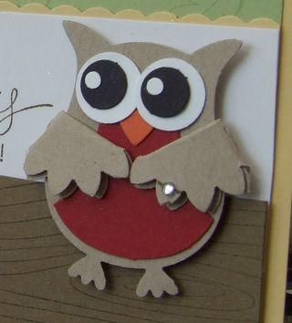 Owl Anniversary CU by Melany Watson