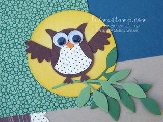 A Hoot Owl CU by Melany Watson