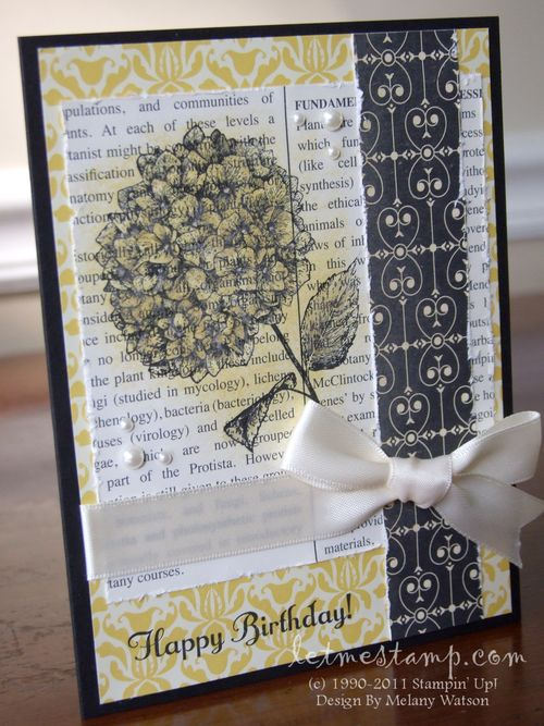 Because I Care Birthday Card by Melany Watson