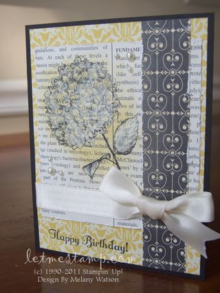 Because I Care Birthday Card Shimmer by Melany Watson