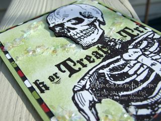 Spooky Skeleton CU by Melany Watson
